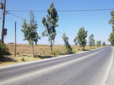 For Sale Land Property 17.600 sq.m. on the Provincial Road of Kos Island